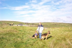 with the dogs on the sand dunes at Church Cove, Gunwalloe