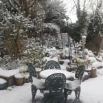 Snow 2012-02-10