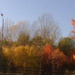 Underpass Autumn view
